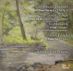 Czech chamber music = Musique de chambre tchèque : 1872-1910   Novak, Vitezslav (1870-1949). Compositeur