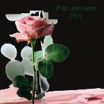 Pop ambient 2011 ANBB, groupe instr. Jules Marsen, Triola, Wolfgang Voigt...[et al.], disc-jockey