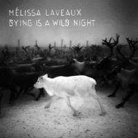 Dying is a wild night | Laveaux, Mélissa. Chanteur