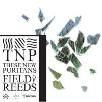Field of reeds | These New Puritans