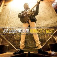 Hornet's nest Joe Louis Walker, chant, guit.