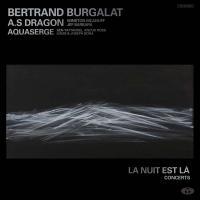 Nuit est là (La) | Burgalat, Bertrand (1963-....). Musicien