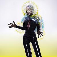 Vulnicura Björk, chant, comp., prod., arr.