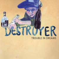Trouble in dreams | Destroyer. Musicien