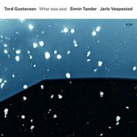 What was said | Gustavsen, Tord