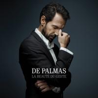 La beauté du geste | De Palmas, Gérald (1967-....). Chanteur. Compositeur. Parolier. Guitare. Clavier - autre