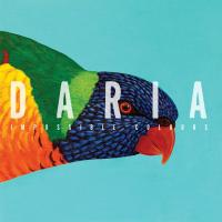 Impossible colours | Daria. Musicien