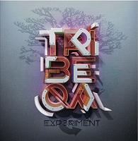 Experiment | Tribeqa. Musicien