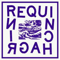 Requin Chagrin | Requin Chagrin. Musicien