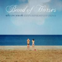 vignette de 'Why are you ok (Band of Horses)'