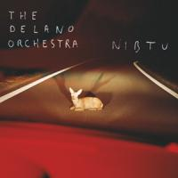 Nibtu The Delano Orchestra, groupe vocal & instrumental