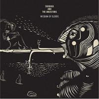 Wisdom of elders | Shabaka and The Ancestors. Musicien