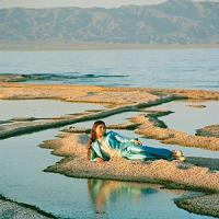 Front row seat to earth / Weyes Blood, comp. & chant | Weyes Blood. Compositeur. Comp. & chant