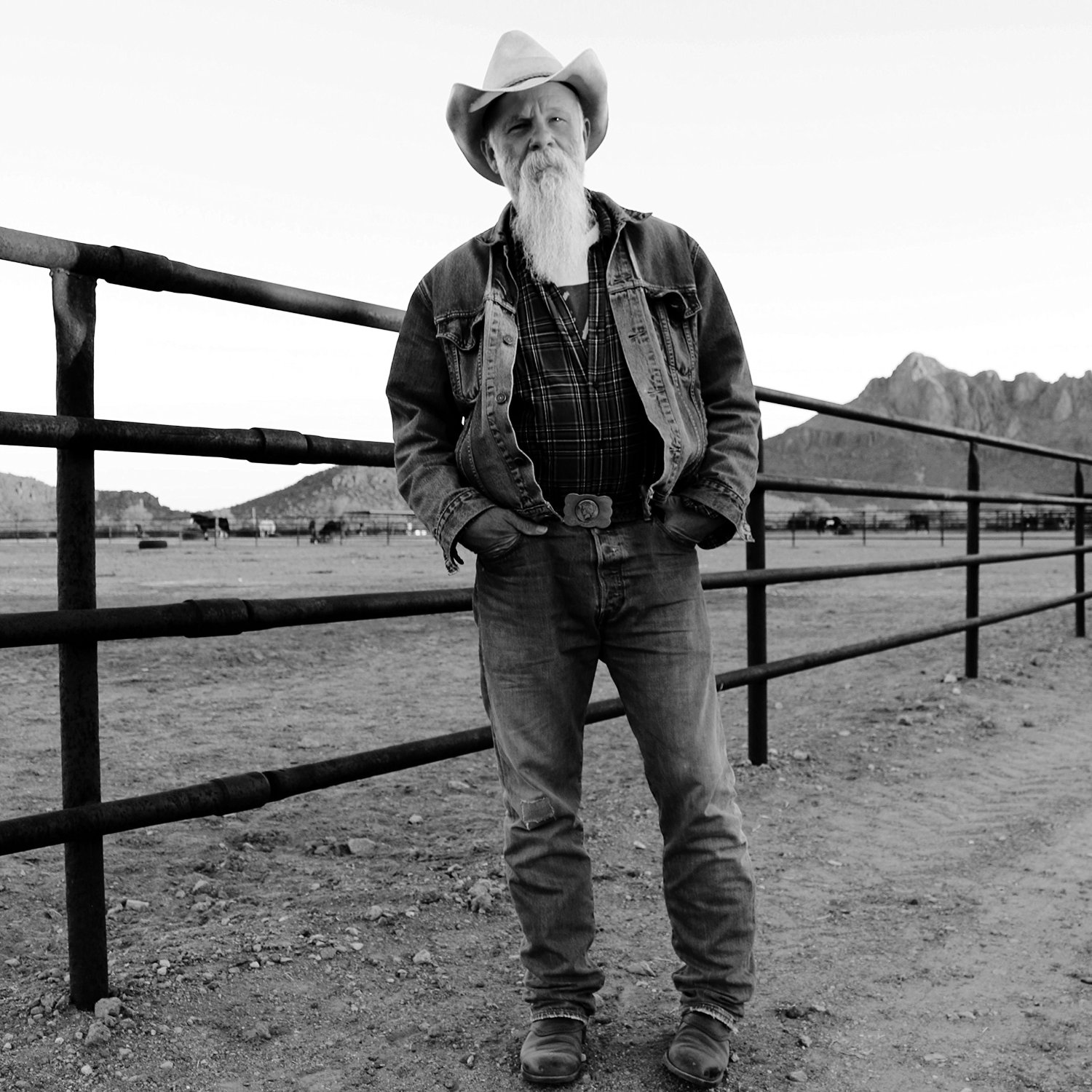 Keepin' the horse between me and the ground / Seasick Steve, comp., chant, guit. |