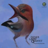 O grito passarinho / Didier Labbé Quartet, ens. instr.   Labbé, Didier. Interprète