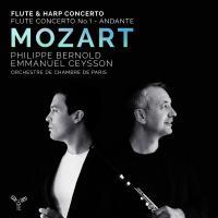 Flute & harp concerto