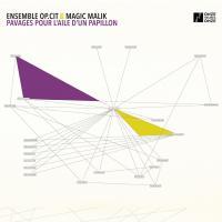 Pavages pour l'aile d'un papillon | Ensemble Op.Cit. Musicien