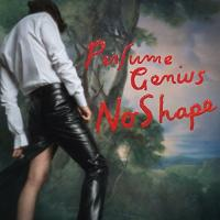 No shape | Perfume Genius