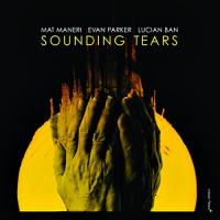 Sounding tears / Mat Maneri, alto | Maneri, Mat. Interprète