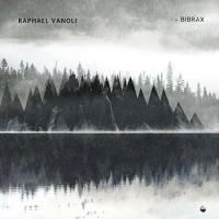 Bibrax / Raphael Vanoli, guit. | Vanoli, Raphael - guitariste. Interprète
