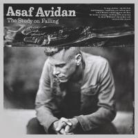 The Study on falling | Avidan, Asaf (1980-....). Chanteur