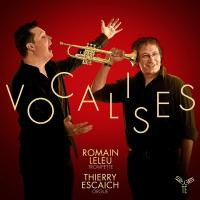 Vocalises | Leleu, Romain (1983-....). Musicien