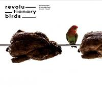 Revolutionnary birds
