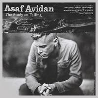 Study on falling (The) / Asaf Avidan | Avidan, Asaf
