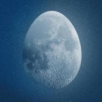 Nuit est encore jeune (La) | Catastrophe. Musicien