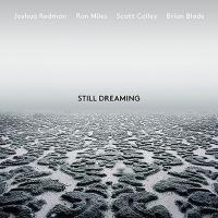 Still dreaming | Redman, Joshua (1969-....)