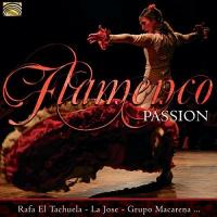 Flamenco passion |