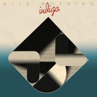 Indigo | Wild Nothing. Musicien