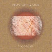 Epic circuits |
