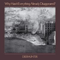 Why hasn't everything already disappeared ? | Deerhunter. Musicien
