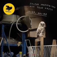 Salika, Molika / Erlend Apneseth, hardanger fiddle   Apneseth, Erlend. Interprète
