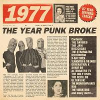 1977 [Nineteen seventy seven] : the year the punk broke |