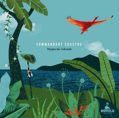 Magnetic islands Commandant Coustou, ens. voc. & instr.