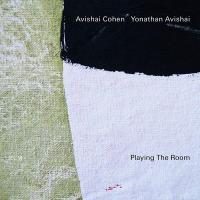 Playing the room | Cohen, Avishai. Trompette