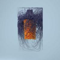 Polymer | Plaid. Musicien