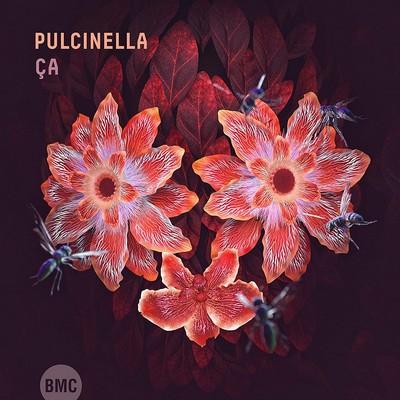 Ça Pulcinella, ens. instr.