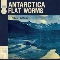 Antarctica | Flat Worms