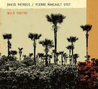 Wild poetry | David Patrois / Pierre Marcault 5tet. Musicien
