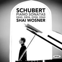 Piano sonatas D845, D894, D958, D960   Schubert, Franz (1797-1828). Compositeur