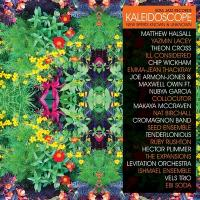 Kaleidoscope : new spirits known & unknown | Matthew Halsall and the Gondwana Orchestra. Musicien