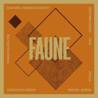 Faune | Raphaël Pannier Quartet. Musicien