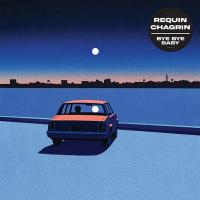 Bye bye baby | Requin Chagrin. Chanteur. Musicien