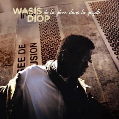 De la glace dans la gazelle Wasis Diop, comp., guit., chant