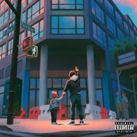 All the brilliant things / Skyzoo |